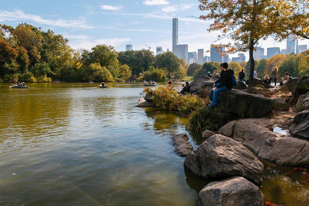 Central Park's Hernshead